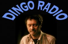 Dingo Radio
