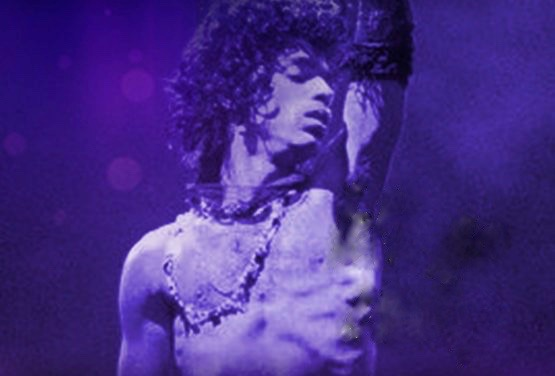 Purple Revolution - MEMO Music Hall